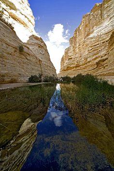 Ein Avdat, Negev, Israel - Ein Avdat, sweet water spring at the negev desert, israel Voyage Israel, The Places Youll Go, Places To Visit, Heiliges Land, Mountain Love, Israel Palestine, Masada Israel, Israel Travel, Israel Trip