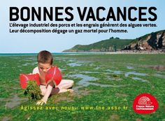 Greenpeace Shark Conservation, Energy Conservation, Agriculture, Paris Metro, Green Algae, Ears Of Corn, Beach Mat, Nature, Environment