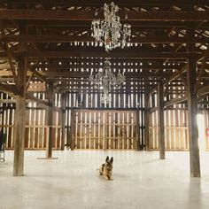 A new winery and event venue is coming to #hendersonky Follow @farmerandfrenchman to keep up with the progress on this 1940s tobacco barn! (Looks like dogs love it, too!)