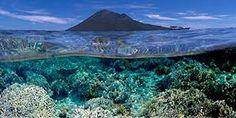 Bunaken Marine Park - Indonesia