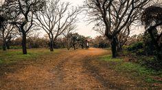 #reserva #ecología #airelibre #photography #green #nature #naturaleza