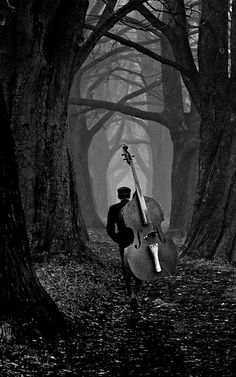 the musician..
