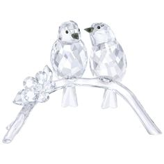Two crystal songbird