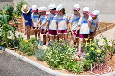 Students of both #elpeixetschool and #ISPprimaria visit daily the ecological garden of #ColegiosISP to learn, observe and participate in the care of the plants that form it, as well as collect some vegetables and fruits. #enriquecimientocurricular #ISPSummerCamp 2018