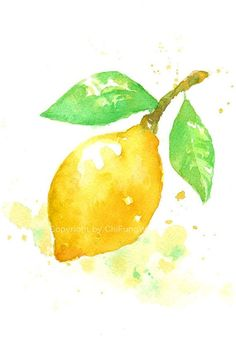 Fruit fruit print giclee art watercolor watercolor by ChiFungW