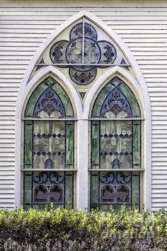 Mcintosh Presbyterian Church Window by Lynn Palmer McIntosh Presbyterian Church - McIntosh, Florida