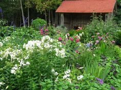 thuya garden, northeast harbor, me - perennial borders - one of the most beautiful places ever!