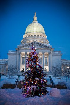 Love visiting joyce in Madison.  Even though it's snowy!  Winter at the capitol in Madison, Wisconsin http://rejoycetoday.blogspot.com/