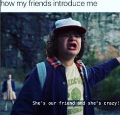"""How my friends introduce me: """"she's our friend, and she's crazy!"""" Stranger things Dustin"""