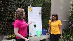Make a water wall, and learn how water moves by experimenting with pressure and siphons!