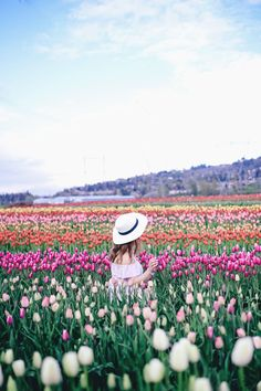 Tulip fields in Vancouver by To Vogue or Bust in an Aritzia silk skirt Aritzia off the shoulder top Joe Fresh panama hat Spring Aesthetic, Tulips Garden, Tulip Festival, Tulip Fields, Poses, Belleza Natural, Champs, Organic Gardening, Flower Power