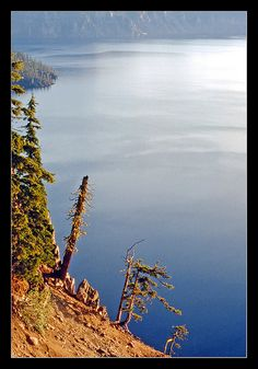 Crater Lake, centerpiece of Oregon's Crater Lake National Park, fills the collapsed volcanic cone of Mount Mazama. USA