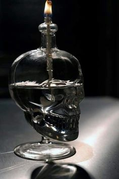DIY Skull Oil Lamp from Crystal Skull Vodka Bottle. I have an empty Crystal Skull Vodka bottle. Im debating between this or filling it with pink christmas lights. Skull Decor, Skull Art, Skull Vodka Bottle, Crystal Skull Vodka, Gothic House, Kelly Wearstler, Super Glue, Vintage Stil, Skull And Bones