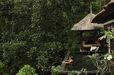 ubud hanging gardens - Recherche Google