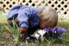 take time to stop and smell the flowers...