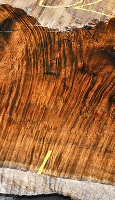 Aloha!! Check out this Koa log! All slabs have a wonderful organic shape, beautiful heavy tight figure patches, gorgeous golden heartwood, and some slabs even show a perfect feather crotch!  ~ Hearne Hardwoods Inc.