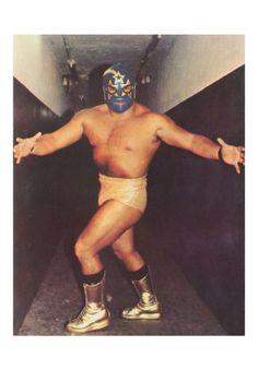 masked wrestler