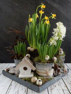 Ik heb een voorjaarsstuk voor in huis gemaakt met blauwe druifjes, narcissen en hyacinten en hier en daar een kwarteleitje.