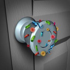 Συμβουλές μιας Μικροβιολόγου: Πως η στοχευμένη καθαριότητα του σπιτιού μπορεί να βοηθήσει  #sprayαπολυμανσης #sprayκαθαρισμου #απολυμανσησπιτιου #απολυμαντικαμαντηλακια #απολυμαντικοχεριων #καθαριοτητα #καθαριοτητασπιτιου #καθαρισμα #κοροναιος #κορονοιος #υγραμαντηλακια HOME TIPS Microbiology, Computer Mouse, Healthy, Cleaning Tips, Pintura, Pc Mouse, Mouse For Computer, Health, Mice