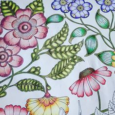 A little part of a coloring along in the Secret Garden by Johanna Basford. I colored with my Faber Castell Polychromos pencils. They are wonderful! Coloring Book Art, Adult Coloring, Secret Garden Book, Johanna Basford Secret Garden, Coloring Tutorial, Fabre, Colouring Techniques, Polychromos, Faber Castell