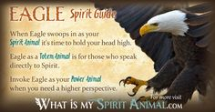 In-depth Eagle Symbolism & Eagle Meanings!Eagle as a Spirit, Totem, & Power Animal. Plus, Eagle in Celtic & Native American Symbols & Eagle Dreams!
