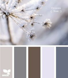 Winter Wedding Color Schemes | some color schemes for a winter wedding | Weddings, Planning | Wedding ...