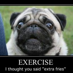 Our latest #PugPost is out and barking! Check it out below. #PugPower