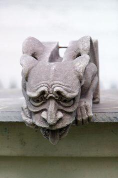 Worrywart Gargoyle gotische waterhoos middeleeuwse
