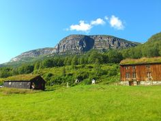 Innerdalen, Sunndal, in the county of Møre og Romsdal.  Gramma Elisa and mama were born in this area