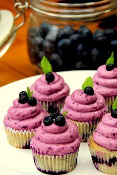Mini Wild Blueberry Cupcakes with Blueberry Cream Cheese Frosting