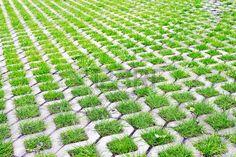 permeable: Estacionamiento Ecológico de celdas de hormigón y césped Foto de…