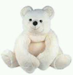 Beautiful cozy bear