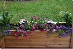 Wenches hage: Tips til høst- og vintersysler Gardening, Tips, Plants, Gardens, Patio, Garden, Lawn And Garden, Planters, Plant