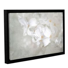 "Alcott Hill White Lilac I Framed Painting Print on Gallery Wrapped Canvas Size: 24"" H x 36"" W x 2"" D"