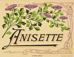Vintage French liqueur label for Anisette