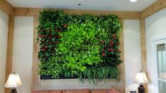 Greenstreet GreenWall installation at the Ruppert Landscaping headquarters.  Great way to reduce noise in any lobby or waiting area.