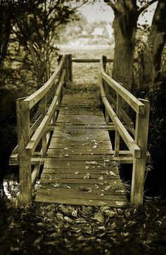 The wooden bridge, Thornham woods, Suffolk, England.