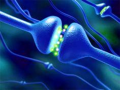 Sonidos isocrónicos para generar serotonina de forma natural...