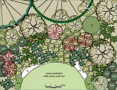 Landscape plan for moist, part-shade northwest garden. From King County Native Plant Guide.