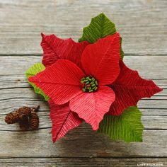 Learn how to make gorgeous crepe paper poinsettias for the holidays with our printable template and video tutorial by paper flower expert Lia Griffith