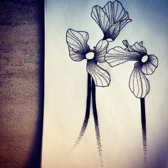 Cyclamen for Haroun! Pour vos projets tattoo, une seule adresse >> futurballistik@hotmail.com #cyclamen #blackflower #flowerstattoo #fleur #tatouegedefleur #tatoueur #tattooer #tattooer #tattooartist #tattooart #tattoodesign #artistetatoueur #inkedbyguet #design #dotwork #dotworker #dotworktattoo #designtattoo #guet #graphism #workshopbynoid #graphictattoo #blackwork #blacktattoo #blackworker #blacktattooart