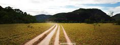 Los caminos del Vichada... #Viajes Descubre la Colombia profunda con Mambe.org!