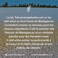 Ramsar : Ref à la Convention pour la conservation des zones humides d'importance internationale