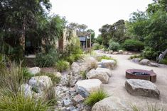 Urban Garden Design Photograph portfolio of native gardens and landscapes designed and built by Australian Landscape designer Sam Cox. Landscape Edging, Landscape Plans, Garden Landscape Design, Landscape Designs, Desert Landscape, Landscaping With Rocks, Modern Landscaping, Backyard Landscaping, Coastal Landscaping