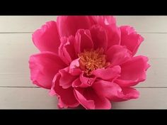 Giant Paper Flower for a DIY Wedding Backdrop - Craft Tutorial – Smile Mercantile Craft Co.