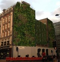 http://createvictoria.com. The living wall at the Rubens Hotel | Create Victoria