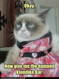 Gato grumpy, grumpy cat disney, sad kitty, funny pics, funny pictures with Grumpy Cat Quotes, Funny Grumpy Cat Memes, Funny Dogs, Funny Animals, Cute Animals, Funny Humor, Memes Humor, Funny Stuff, Funniest Animals