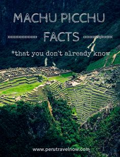 Peru Travel Tips l Machu Picchu Facts That You Don't Already Know l @perutravelnow_ Know someone looking to hire top tech talent and want to have your travel paid for? Contact me, carlos@recruitingforgood.com