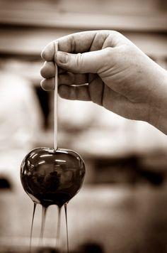 La pomme d'amour - le Fotographe