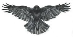 Image result for crow tattoos